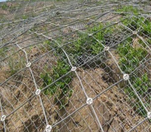 为什么边坡防护网是柔性的